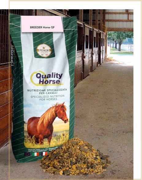 breeder-horse-qf-nutrizione-specializzata-cavalli