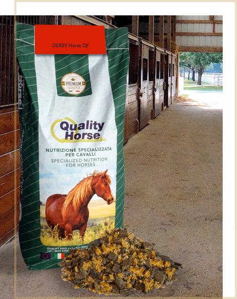 derby-horse-qf-mangime-cavalli-proteine-grassi-fiocc