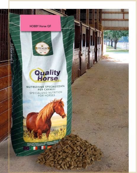 hobby-horse-qf-mangime-cavalli-in-mantenimento