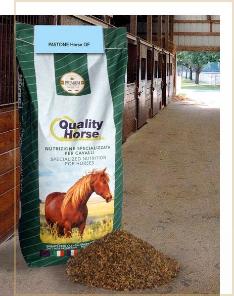pastone-horse-qf-integratore-alimentare-cavalli-semi-lino-crusca-idratazione-intestino-cavallo